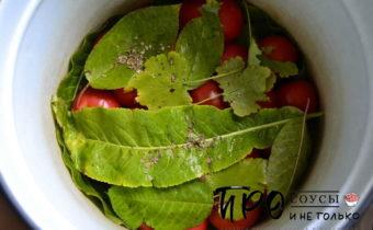 квашеные помидоры в кастрюле