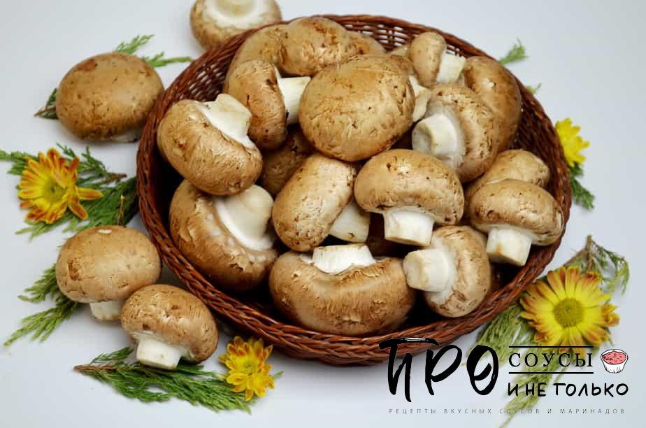 грибной порошок