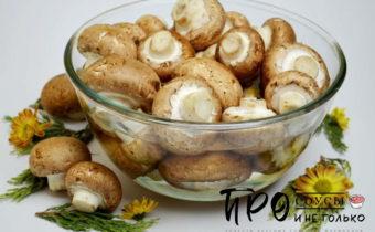 Грибной порошок из сушеных грибов